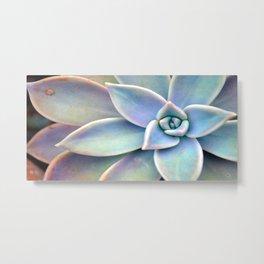 Pastel Succulent Metal Print