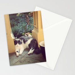 Chillin' Stationery Cards