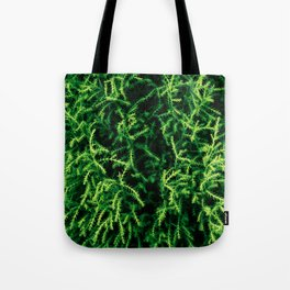 Botanical Gardens Evergreen #939 Tote Bag