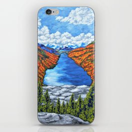 A View of the Blue Mountains of the Adirondacks iPhone Skin