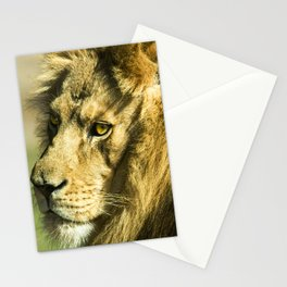 Royal and Regal Lion Stationery Cards