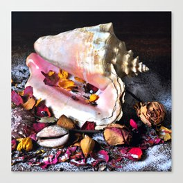 Maritime Symphony with Sea Shells and Roses Canvas Print