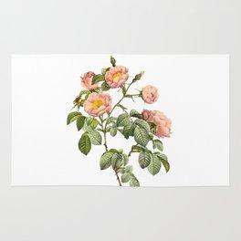 Vintage Pink Roses [03] Rug