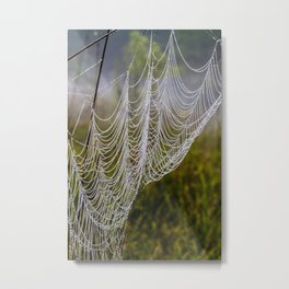 web in the field Metal Print