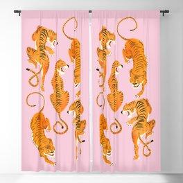 Three fierce tigers Blackout Curtain