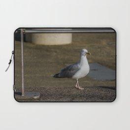 Sea Gull Struttin along Cardiff Bay Wales Laptop Sleeve