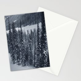 Winter 14 Stationery Cards