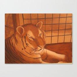 Tiger at the Zoo Canvas Print
