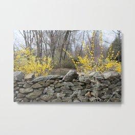 Spring in Virginia Metal Print