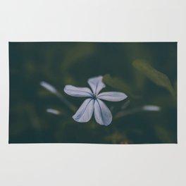 Blue in Bloom Rug