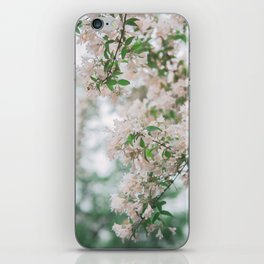 spring #society6 #decor #buyart iPhone Skin