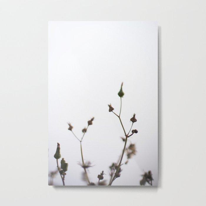 Neutral Floral Metal Print
