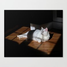 Windowpane Canvas Print