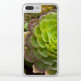 Aeonium virgineum Clear iPhone Case