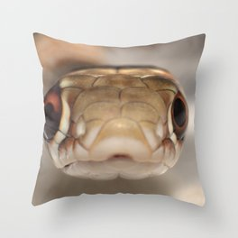 Close Encounters of the Third Kind Throw Pillow