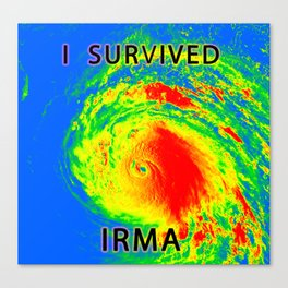 I survived hurricane Irma Canvas Print