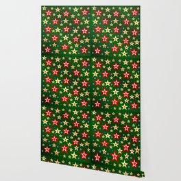 grenn,blue,gold,red stars xmas pattern Wallpaper