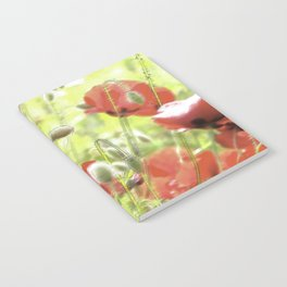 Poppies in the bright sunshine Notebook