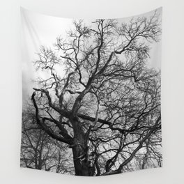 Old oak tree. Moscow district. Wall Tapestry