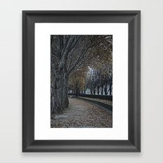 Painting or Photo?? Framed Art Print