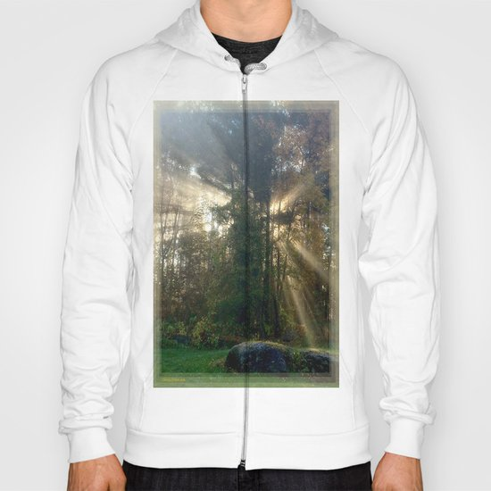 Sunlight Streams - Vermont Morning Glory Hoody