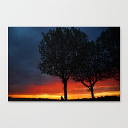 Colours of the night Canvas Print