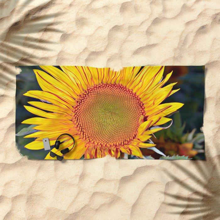 Floating SUN Beach Towel