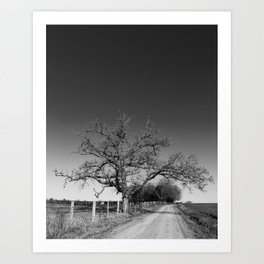 Tree No. 4 Art Print