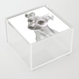 Chihuahua Dog Acrylic Box