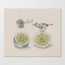 Lemon bird Canvas Print
