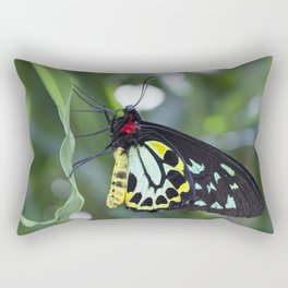 Cairns Birdwing Butterfly Rectangular Pillow