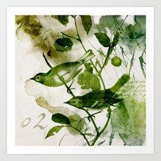 Birds (square 2) Art Print