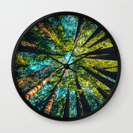Looking Up At Trees In A Dense Forest Wall Clock