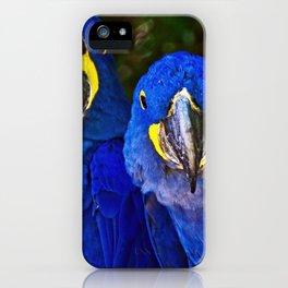 # 292 iPhone Case