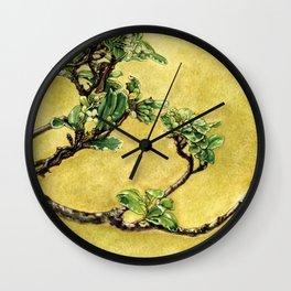 Japanese Pittosporum at the Hakone Gardens Wall Clock
