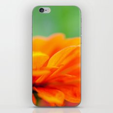 Summer Bloom iPhone & iPod Skin