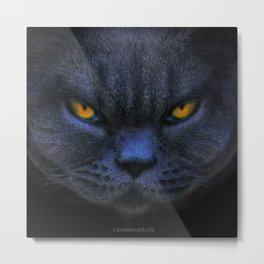 Very Cross Cat Metal Print