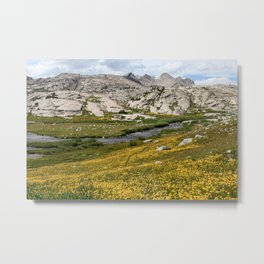 Titcomb Basin, Wind River Range Metal Print