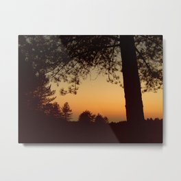 Forest Sunset #5 Metal Print