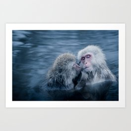 Snow Monkeys Art Print