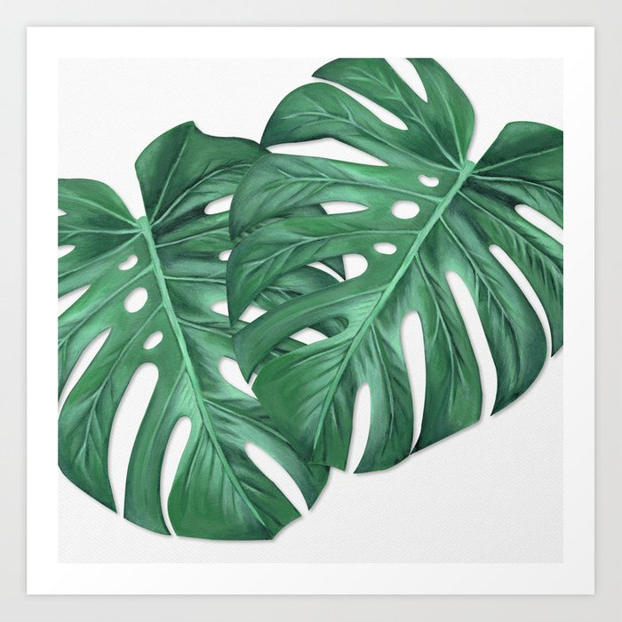 Monstera Tropical Leaf Painting Art Print By Anne Marieart