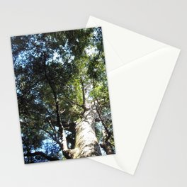 Agathis australis Stationery Cards