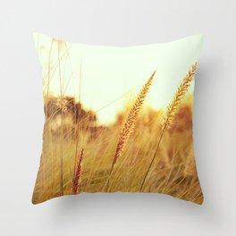 Sunlit Fountain Grass Photograph Throw Pillow
