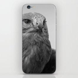 Common Buzzard BW iPhone Skin