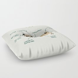 Anatomy of a Pug Floor Pillow