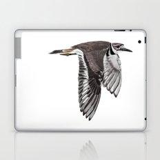 Vociferus peruvianus - Charadrius - Killdeer - Chorlo gritón Laptop & iPad Skin