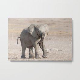 Playful young elephant  Metal Print