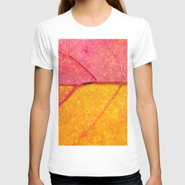 Close up view of structure of the leaf  - beautiful natural photography T-shirt