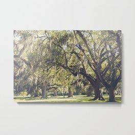 Audubon Park - New Orleans Metal Print