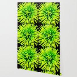 Lime Spider Wallpaper